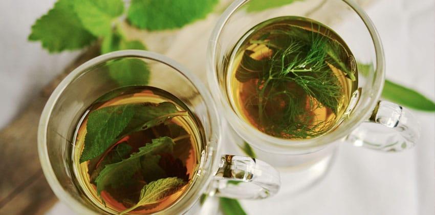 صبحانه چای سبز