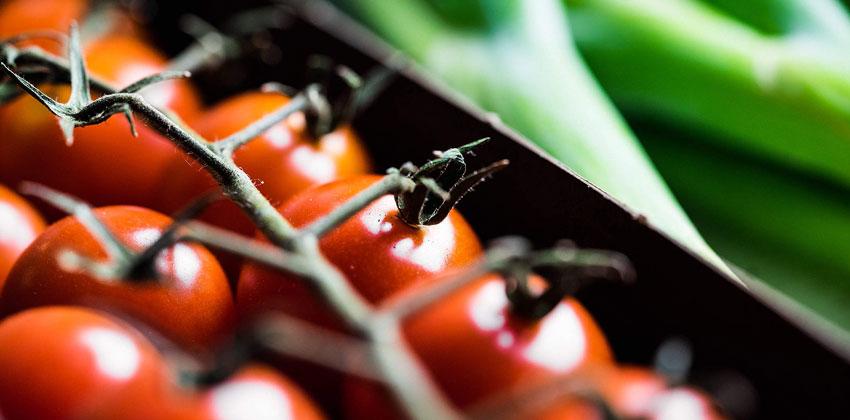 فایده های رژیم گیاهخواری