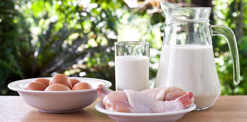 کاهش وزن سریع با پروتئین