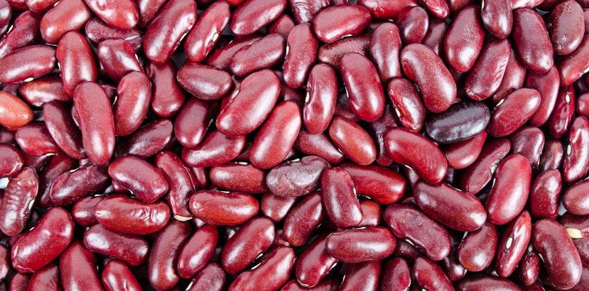 لوبیا قرمز کربوهیدرات سالم دارد