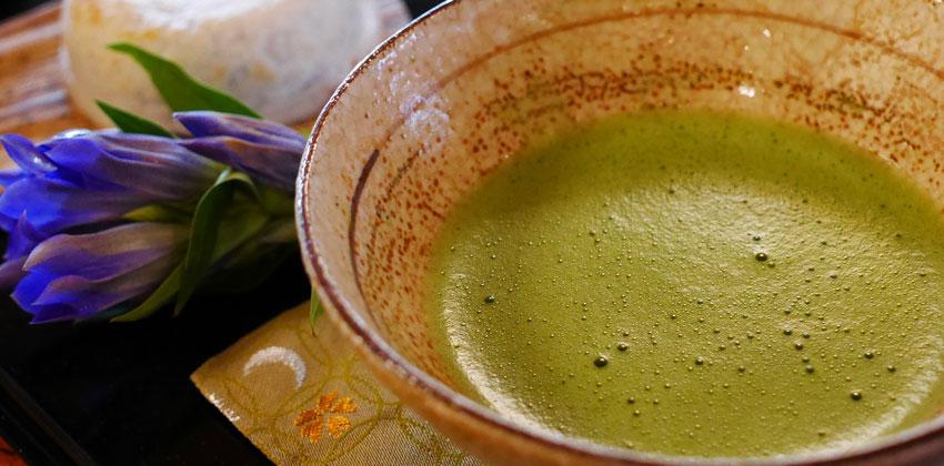 چربی سوزی با عصاره چای سبز