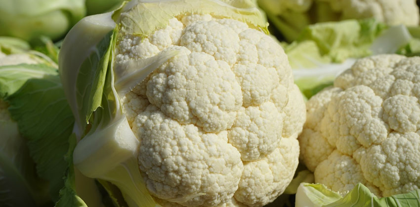 گل کلم از سبزیجات کم کربوهیدرات است