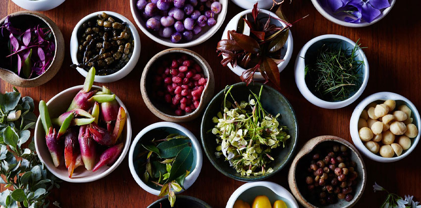 نمونه رژیم غذایی خام خواری