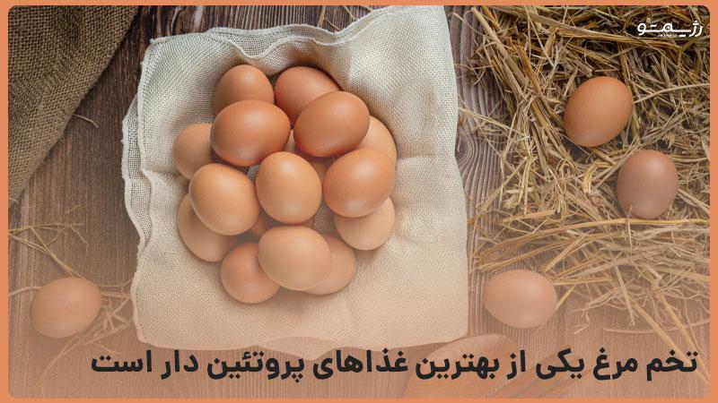 تخم مرغ از منابع پروتئین است