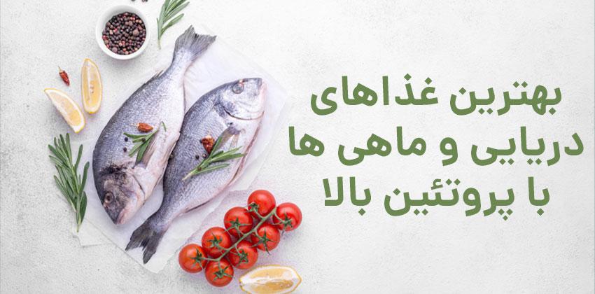 ماهی با پروتئین بالا