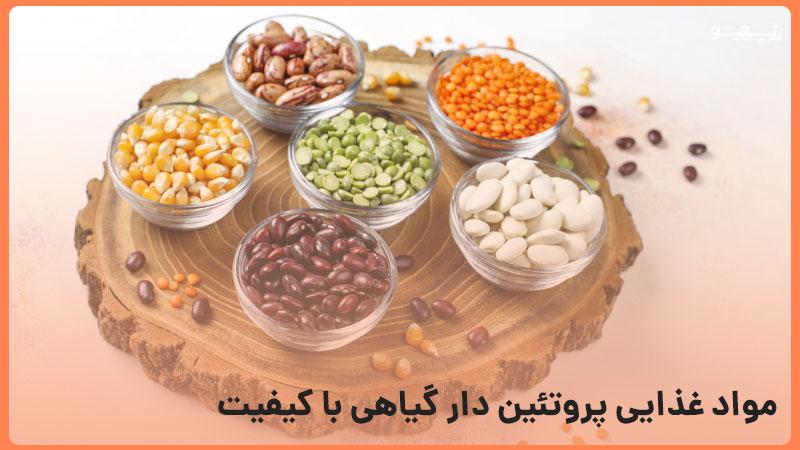 مواد پروتئین دار گیاهی